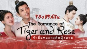 series-the-romance-of-tiger-and-rose